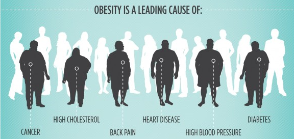 infographic.obesity.gr